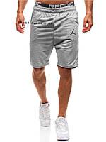 Мужские шорты Jordan светло серые реплика