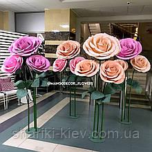 Розы Кусты 4 штуки Аренда Персиковые и Розовые