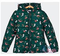 Куртка демісезонна для дівчинки Tiffosi., фото 1