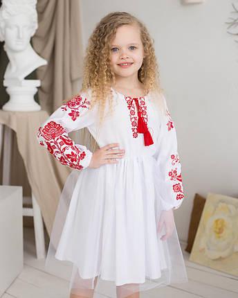 Дитяча сукня вишиванка для дівчинки Птиці, фото 2