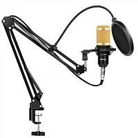 Студийный микрофон со стойкой и ветрозащитой для записи вокала и видео Music D.J. M800 черно-золотой