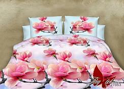 2-спальные комплекты (выбор расцветок и тканей)