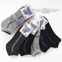 """Укорочені ТЕМНО-СІРІ чоловічі підліткові шкарпетки Pesail 6014-1 """"спорт"""", відмінне х/б якість. Розмір 35-38"""
