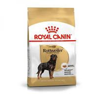 Сухой корм Royal Canin Rottweiler 26 корм для ротвейлеров, Выбор: 12 кг