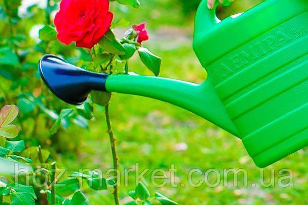 Лейка пластмассовая садовая 5л