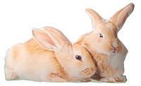 Подушка «Кролики»