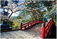 Пазл 1500 элементов / Красивая сакура (Япония)