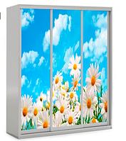 Детский шкаф-купе 3Д.  Viorina-Deko, фото 1