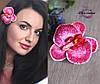 """Заколка для волос """"Экстравагантная орхидея"""". Украшение в прическу с цветами"""