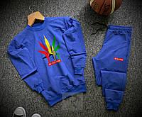 Спортивный костюм мужской Stonerdays x blue осенний весенний, фото 1