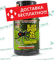 Жиросжигатель USA ORIGINAL!!! Cloma Pharma CPh Black Spider 25 ephedra 100 капс