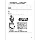 Біологія 9 клас Зошит для практичних і лабораторних робіт та досліджень Авт: Кулініч О. Вид: Генеза, фото 3