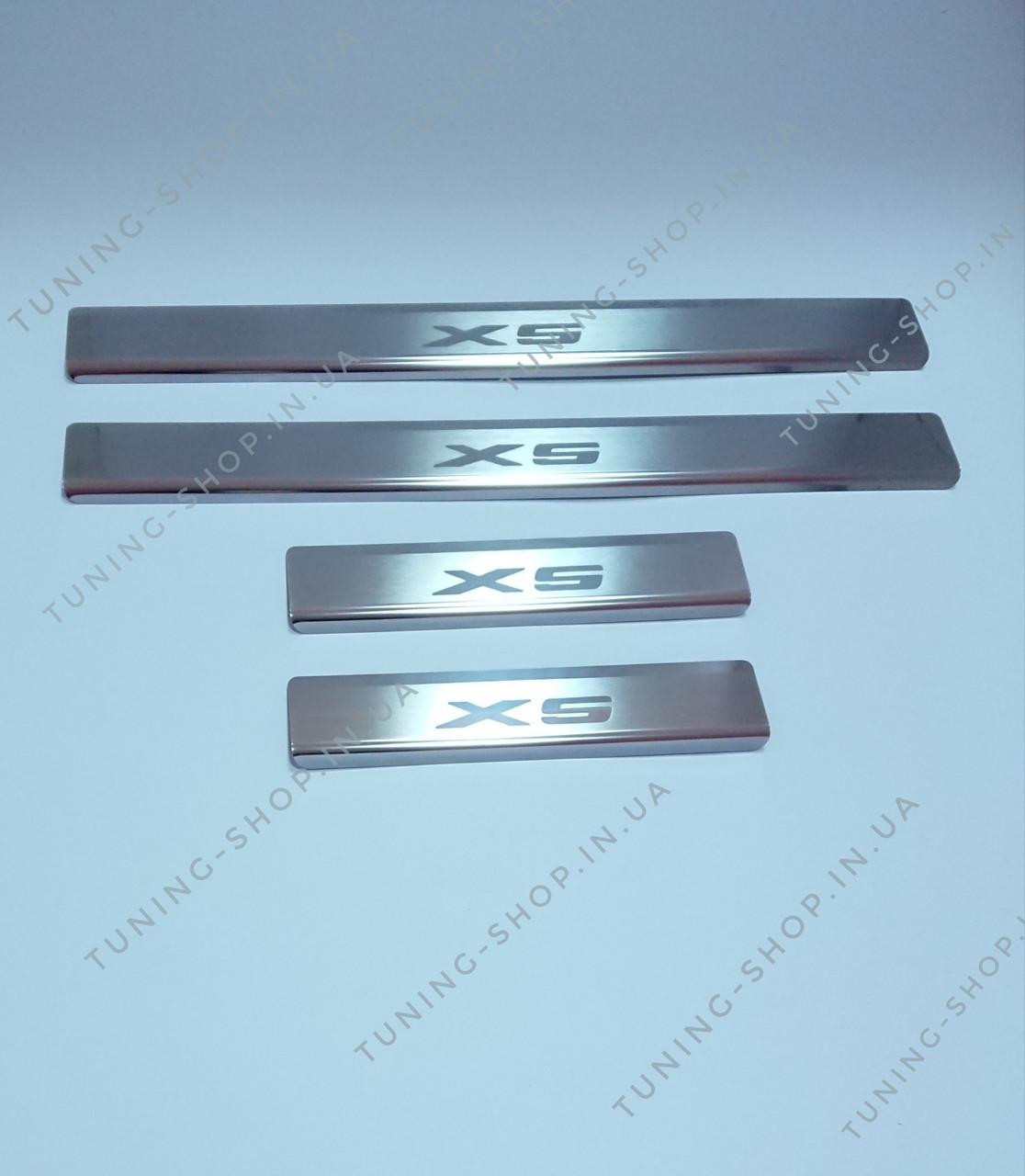 Накладки на пороги BMW X5 E70 2007-2013, Premium
