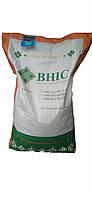 Семена кукурузы ГРАН 310 (фао 250)/насіння кукурудзи Гран 310