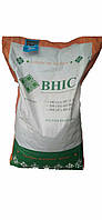 Семена кукурузы ГРАН 6 (фао 300)/насіння кукурудзи Гран 6