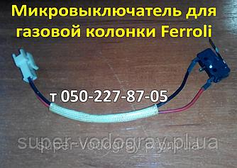 Микровыключатель для газовой колонки Ferroli