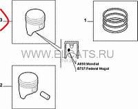Поршень с кольцами STD 1.4 8v Doblo 2005-2009 55204025