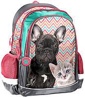 Рюкзак школьный Paso Разноцветный 18-081PK, КОД: 1522722