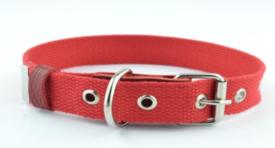 Ошейник для собак брезент, красный, 20 мм, 32-42 см, BE FORE