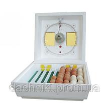 Инкубатор Квочка МИ-30-1-Э на 80 яиц, фото 2