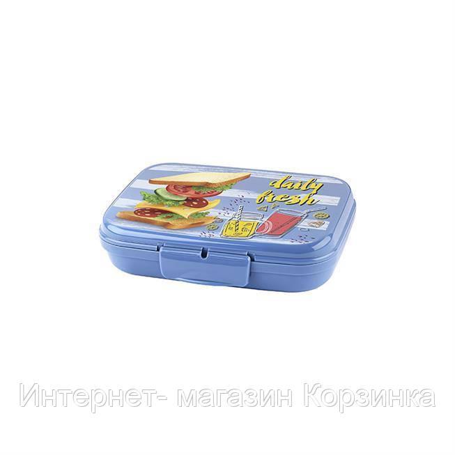 Контейнер для ланча с рисунком 160x130x40 см 600мл AP-9078 Titiz Plastik, цвет mix (18 шт/ящ)