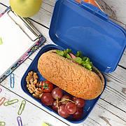 Бутербродницы и ланчбоксы для школы и в дорогу