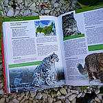 Красная книга Земли, фото 3