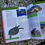 Красная книга Земли, фото 4