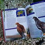 Красная книга Земли, фото 6