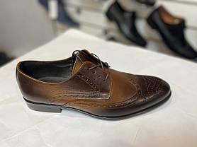 Елітні модельні туфлі TAPI, фото 2