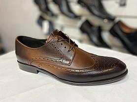 Елітні модельні туфлі TAPI, фото 3