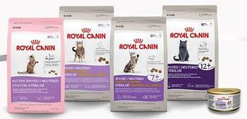 Сухие корма для котов ROYAL CANIN