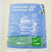 Фунгіцид Кумулюс ДФ 20 кг BASF на основі сірки