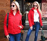 """Жіноча стильна куртка демисезон 9276 """"Канада Стійка"""" в кольорах, фото 3"""