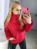 """Жіноча стильна куртка демисезон 9276 """"Канада Стійка"""" в кольорах, фото 9"""