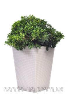 Planter - плетеный цветник 23.6 л бежевый