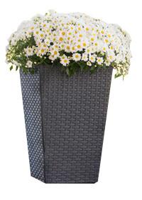 Planter - плетеный цветник 23.6 л коричневый