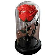 Роза в колбе с LED подсветкой Маленькая - Красная