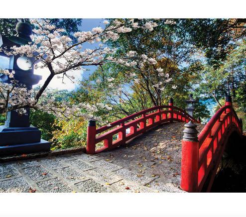 """Пазлы """"Прекрасная сакура, Токио, Япония"""", 1500 элементов Dankotoys"""