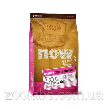 Сухой корм Now для кошек   Now Fresh Adult Cat Grain Free 1,81 кг, фото 2