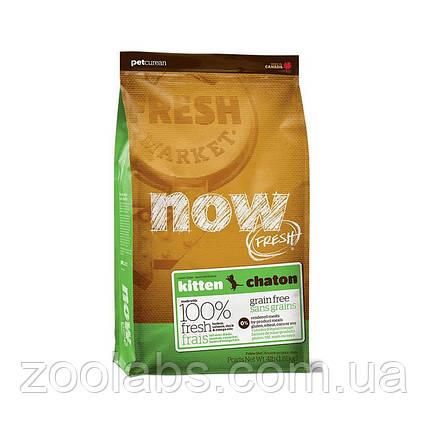 Сухой корм Now для котят | Now Fresh Kitten Grain Free 1,81 кг, фото 2