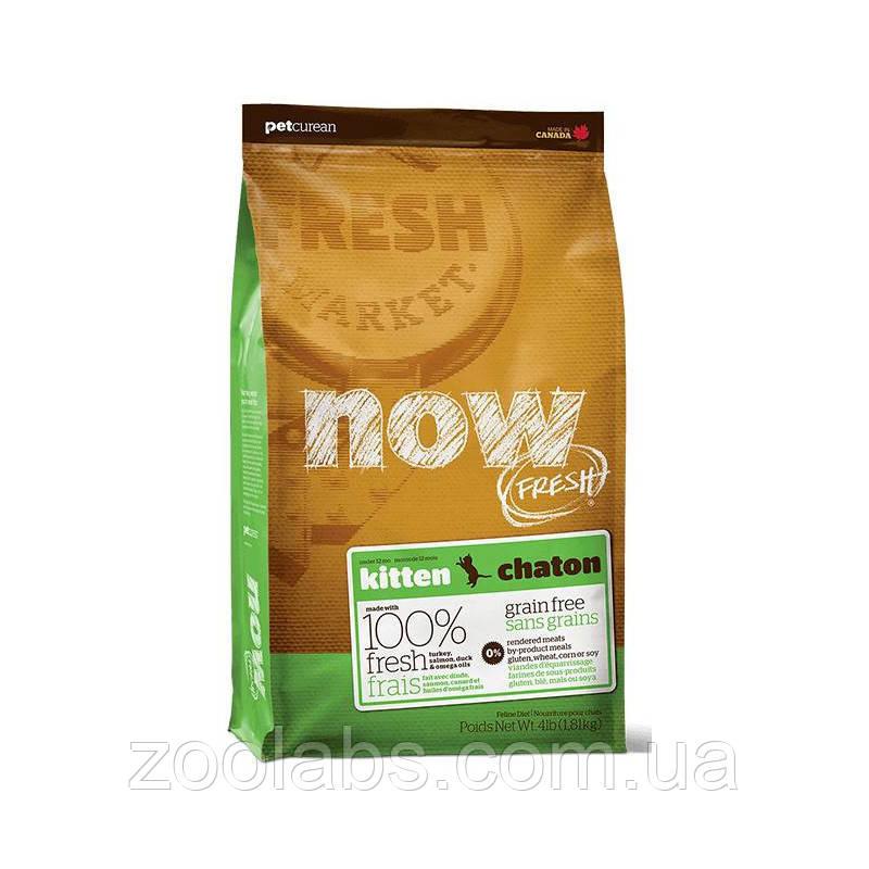 Сухой корм Now для котят | Now Fresh Kitten Grain Free 3,63 кг