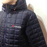 Куртка чоловіча, осіння стьобаний р. Л,ХЛ,ХХХЛ, фото 2