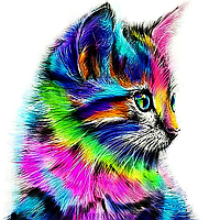 """Набор алмазной вышивки (мозаики) """"Радужный котик"""""""