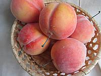Персик большой (пенопластовый) 20/16 (цена за 1 шт. +4 грн.)