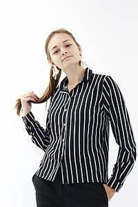 Блуза жіноч