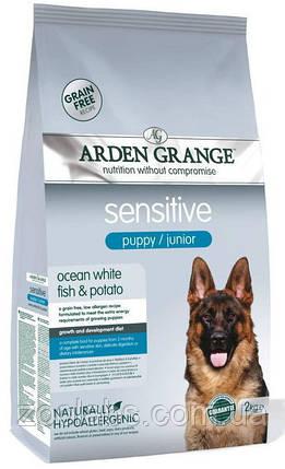 Корм Arden Grange для щенков с рыбой | Arden Grange Sensitive Puppy Junior 2 кг, фото 2