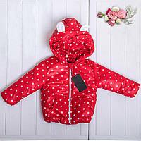 Весенняя детская курточка, фото 1