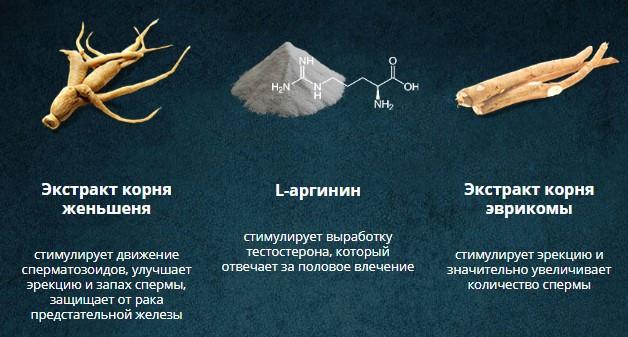 состав капсул Erogan
