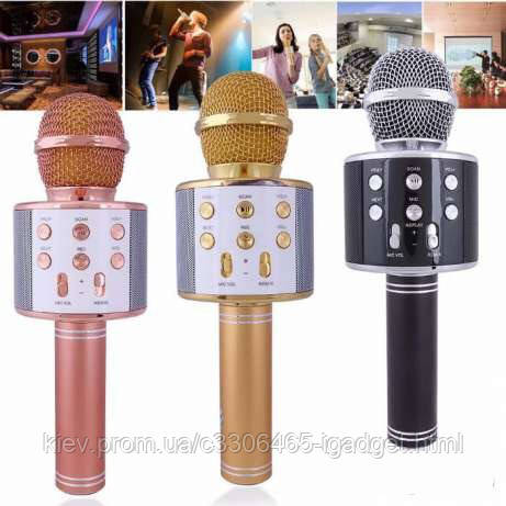 Микрофон 858